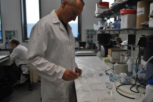 Tzanko Tzanov en su laboratorio del Edificio Gaia de la UPC